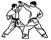 Shotokan Karate Cattolica