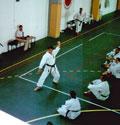 M° Kanazawa a Misano (rn) - stage di luglio 2001