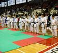 Karate World Championship 2010 - Kata - Abel Serena, Tosi Mara e Gennari Silvia