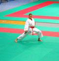 Urbino Campionati Italiani Fijlkam - Kata - Abel Serena