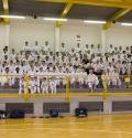 22.03.2015 Stage a Ferrara