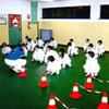Corso bambini 2005-2006